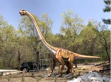 这个中秋国庆,郑州荥阳塔山风景区喊你来看恐龙,赏风车啦!