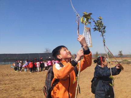 【心得报告】植树、多肉、风筝……南流小学植树节活动乐翻
