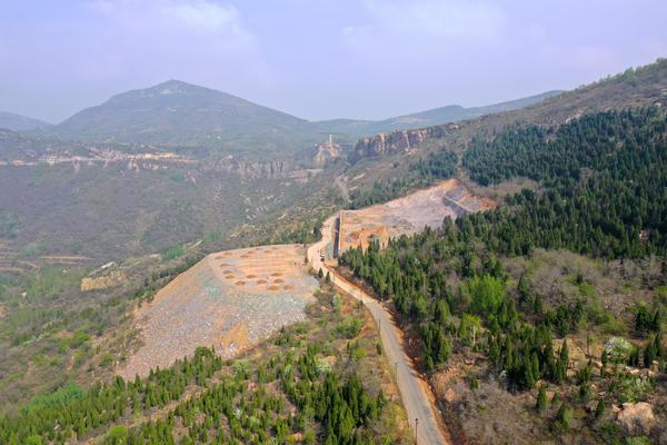 为修建停车场,登封一村庄毁坏林地26亩